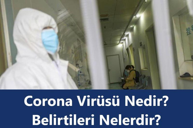 corona virüsü nedir.jpg